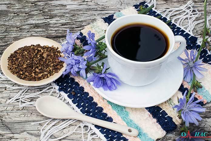 кофе из корня цикория